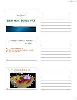 Bài giảng sinh học đại cương  chương 4   GV  nguyễn thành luân