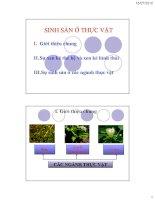Bài giảng sinh học đại cương  chương 6   GV  nguyễn thành luân