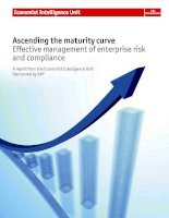 Ascending the maturity curve effective management of enterprise risk and compliance