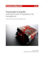 From burden to benefit making the most of regulatory risk management