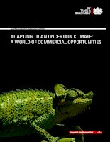 Adapting to an uncertain climate a world of commercial opportunities