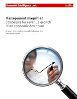 Management magnified strategies for revenue growth in an economic downturn