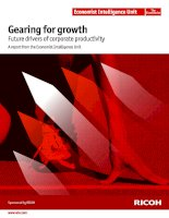 Gearing for growth future drivers of corporate productivity