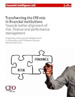 Transforming the CFO role in financial institutions towards better alignment of risk, finance and performance management