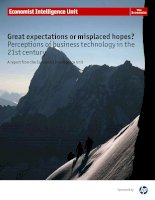 Great expectations or misplaced hopes perceptions of business technology in the 21st century