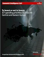To invest or not to invest ICT spending priorities in crisis hit central and eastern europe
