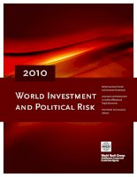 2010 world investment and political risk