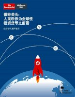 A delicate stage the future of renminbi as a global investment currency chinese