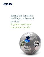 Facing the sanctions challenge in financial services a global sanctions compliance study