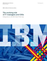The evolving role of IT managers and CIOs findings from the 2010 IBM global IT risk study