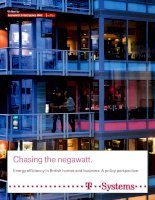Chasing the negawatt energy efficiency in british homes and businesses   a policy perspective