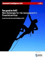 Too good to fail new challenges for risk management in financial services
