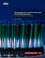 Risk management in the pharmaceuticals and life sciences industry
