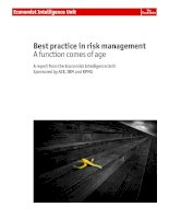 Best practice in risk management a function comes of age