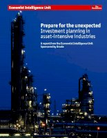 Prepare for the unexpected investment planning in asset intensive industries
