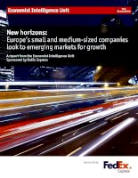 New horizons europes small and medium sized companies look to emerging markets for growth