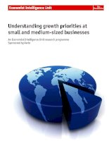 Understanding growth priorities at small and medium sized businesses