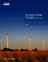 The winds of change an insight into ma in the renewable energy sector in 2009