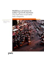 Building a presence in todays growth markets the experience of privately held companies