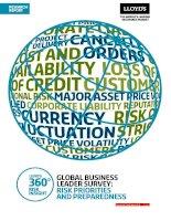 Global business leader survey risk priorities and preparedness