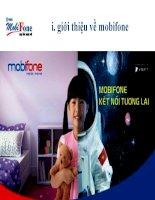 Tìm hiểu hoạt động chăm sóc khách hàng của công ty thông tin di động mobifone chi nhánh huế