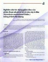 Nghiên cứu tác dụng giảm đau của phân đoạn alcaloid từ củ của cây ô đẩu aconitum carmichaeli debx ) trồng ở tỉnh hà giang
