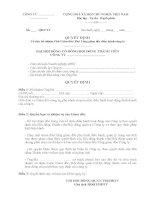 Mẫu Quyết định bổ nhiệm phó giám đốc