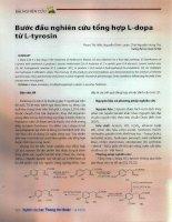 Bước đầu nghiên cứu tổng hợp l dopa từ l tyrosin
