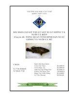 Chuyên đề TỔNG QUAN TÌNH HÌNH sản XUẤT GIỐNG và NUÔI cá mú
