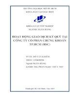 Hoạt động giao dịch ký quỹ tại công ty cổ phần chứng khoán thành phố hồ chí minh (HSC)