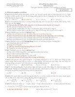 Đề thi vật lý 11 học kì 1
