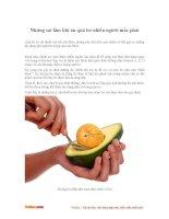 Những sai lầm khi ăn quả bơ nhiều người mắc phải