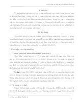 Bài tập cá nhân môn luật hành chính