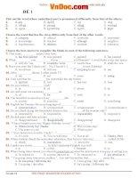 25 đề thi học kì 1 môn tiếng anh lớp 12 có đáp án