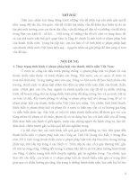 tình hình vi phạm pháp luật của thanh, thiếu niên Việt Nam hiện nay