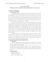 skkn tạo sân CHƠI để học SINH GIẢM VI PHẠM nội QUI  kỷ LUẬT