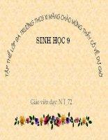 Bài giảng sinh học 9 tham khảo ADN và bản chất của gen (32)