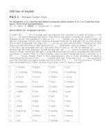 Đề thi CAE Use of English (test 2)