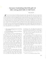 Sensory marketing trên thế giới và tiềm năng phát triển ở việt nam