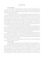 Dạy học thơ văn Nguyễn Đình Chiểu dưới góc nhìn văn hóa Nam Bộ