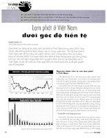 Lạm phát ở việt nam dưới góc độ tiền tệ