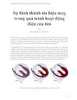 Sự hình thành tín hiệu mcg trong quá trình hoạt động điện của tim