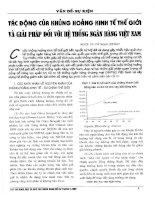 Tác động của khủng hoảng kinh tế thế giới và giải pháp đối với hệ thống ngân hàng việt nam