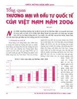 Tổng quan thương mại và đầu tư quốc tế của việt nam năm 2006