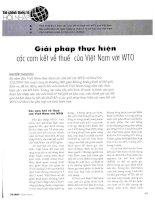 Giải pháp thực hiện các cam kết về thuế của việt nam với WTO