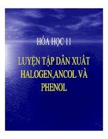 Bài giảng bài luyện tập dẫn xuất halogen, ancol và phenol hóa học 11 (2)