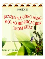 Bài 35 benzen và đồng đẳng  một số hiđrocacbon khác   12 bài giảng hóa học 11 (8)