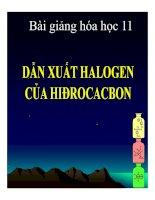 Bài giảng bài dẫn xuất halogen của hiđrocacbon hóa học 11 (3)