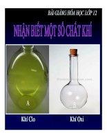 Bài giảng bài nhận biết một số chất khí hóa học 12 (3)