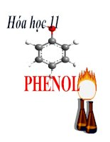 Bài giảng bài phenol hóa học 11 (4)